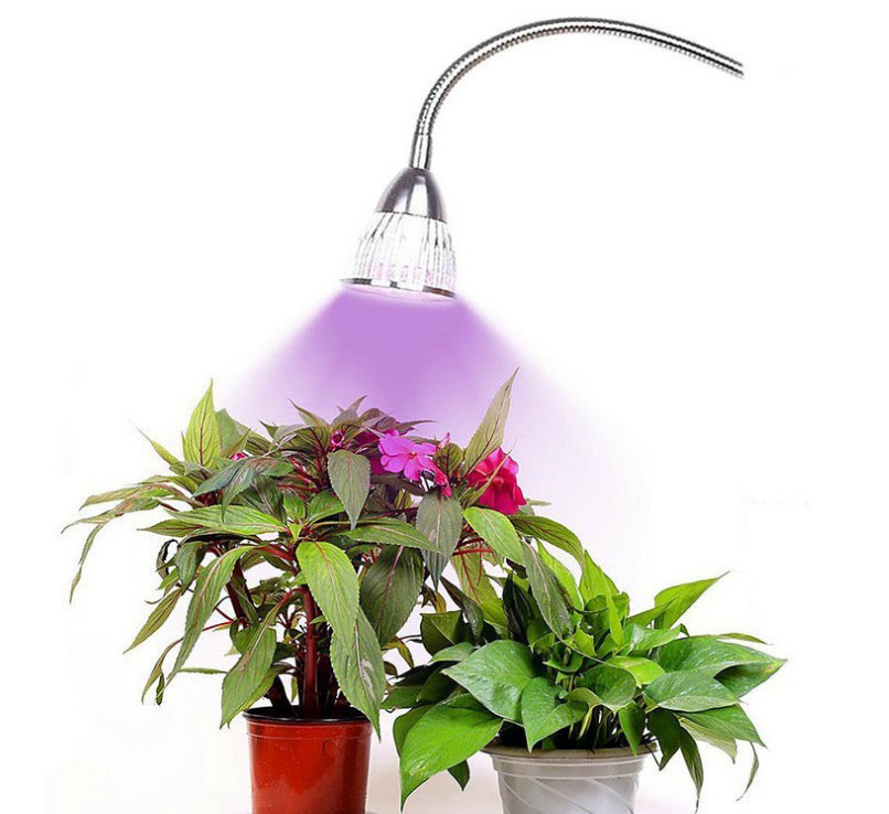 5w led grow light